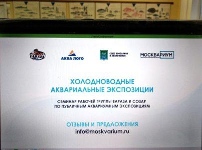 ДРТИ принял участие в семинаре «Холодноводные аквариальные экспозиции»